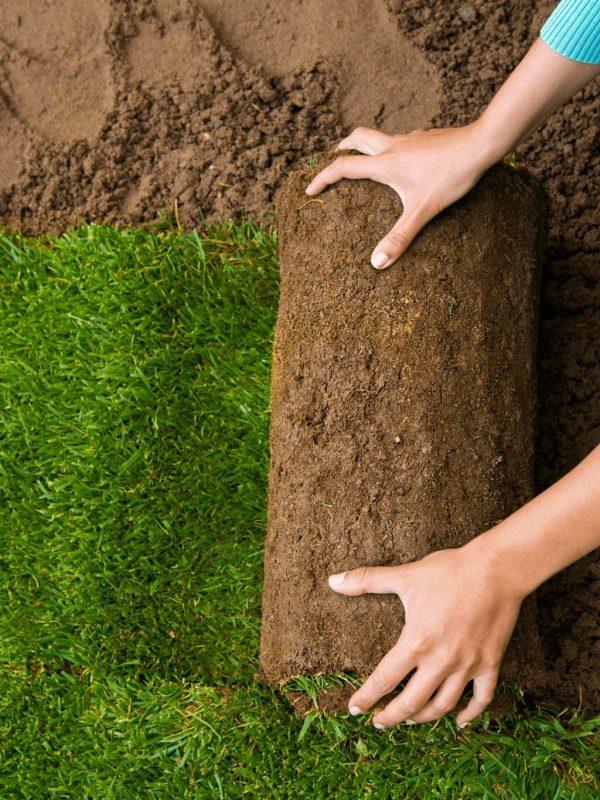 fix-my-lawn2